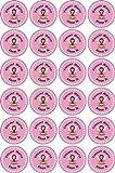 JINTORA Nome Adesivo/Etichette adesive Personalizzate per quaderni, Libri e Materiale Scolastico - 40x40mm - 003 - Petite Fata - 24 Pezzi per Bambini, Scuola e Scuola Materna - Stampa Individuale