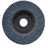 Aparoli SafeProtex 85523 Lot de 10 disques à lamelles Acier inoxydable, acier, bois et plastique Ø 125 mm grain 40