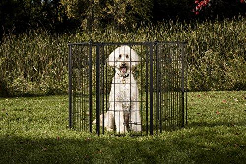 Carlson Pet Products Hundegitter, wetterfest, extra hoch