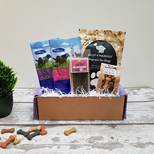 Poochie Presents Dog Treat Box Present Gift Hamper - All Nibble, No Quibble