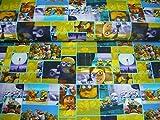 Jersey Stoff / Kinder / Disney / Minions