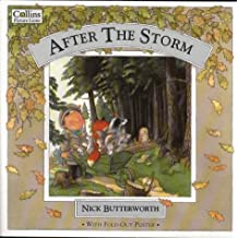 After the Storm: Big Book