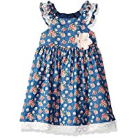 Bonnie Jean Little Girls' Chambray Dress, Rose Print, 4