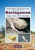 Bücher zum Thema bei Amazon