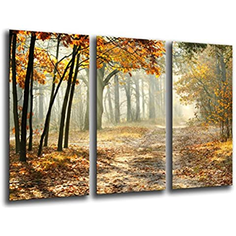 Cuadro Buda fotografico base madera, 97 x 62 cm, Bosque Otoño, Paisaje Naturaleza, Atardecer ref.