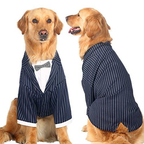 hzeit Outfits Tuxedo Garment Kleidung für Bulldoggen Hund Formale Party Shirt mit Fliege für Hunde Golden Retriever großen Bog Coat Jacke Kostüm (Golden Retriever-kostüm)