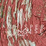Songtexte von A Whisper in the Noise - To Forget