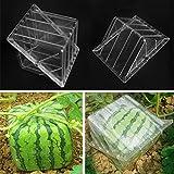 Bluelover Anguria A Forma Quadrata Zucca Modellatura Crescita Frutta Giardino Di Stampo Stampo Di Formatura