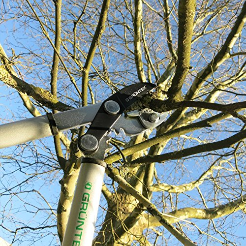 GRÜNTEK Astschere Grizzly 470 mm Scharfe AMBOSS Baumschere mit Gear-Drive Schneidsystem, Getriebeastschere