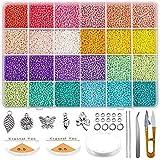Queta Kit de inicio de cuentas de vidrio 19200 piezas 2 mm 12/0 Bolitas colores para accesorios de joyería de pulsera de bric