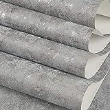 ZCHENG Industrieller Wind des Zementgrußes industrieller Wind ins tapezieren Tapetenrestaurantfriseursalonkleidungsladenschlafzimmerhintergrundtapete, Steinwand graues YR0802, nur Tapete