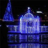 KRISMILEN Natale luce rete mesh fata luce 8X10M impermeabile luci con Super LED luminosi per l'albero di Natale luci partito indoor outdoor , blue