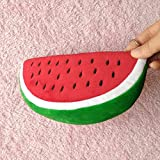 Leisial Watermelon School Pencil Case and Womens Cosmetics Bag red
