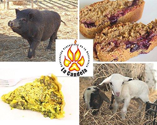 Recetas veganas y refugiados La Candela (1)