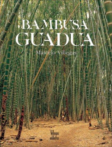 Bambusa Guadua (La Cultura del Cafe)