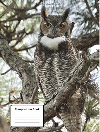 Composition Notebook: Owl Composition Notebook / Journal 7.44 x 9.69 200 Pages