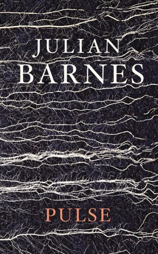 Pulse por Julian Barnes