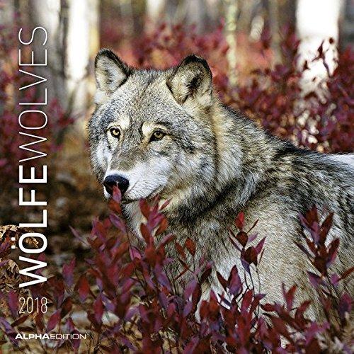 Wölfe 2018 - Wolves - Broschürenkalender (30 x 60 geöffnet) - Tierkalender - Wandplaner