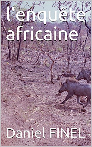 l'enquête africaine par Daniel FINEL