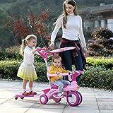 Kinderfahrrad, Faltrad 1-6 Jahre alt, Kinderwagen, 360 ° Geländer, abnehmbare Schubstange, verstellbare Markise, Ride-Schiebe Integriertes Doppelauto ( Color : Pink )