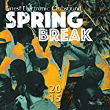 Spring Break 2015 (Best of Electronic Clubsound & House)
