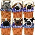 Kansas Girl Cute Dog In Basket Fancy Dress Accessory - Toto Fancy Dress Accessory - Perfect For Book Week Fancy Dress