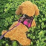 Barlingrock Brustrücken und Zugseil Hundegeschirr + Leine Blei einstellbar Haustier Hund atmungsaktiv Zugkraft Gitter Druck Brustgurt für Hunde gut für Hunde Katzen Tiere Walking Training