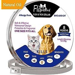 Collar Antiparasitario Para Perro y Gato, Flightbird-8 Meses de Protección Impermeable & ~ Hipoalergénico-fina y Prevención de Picaduras - Collares de Control de Plagas - Extractos de Plantas Naturales Para Todas las Mascotas de 25 Pulgadas