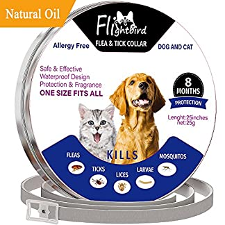 flea and tick collar for dog cat, 8 months protection, natural plant extracts-waterproof-safe & hypoallergenic-anti flea and tick prevention-pest control collars for pets 25 inches Flea and Tick Collar for Dogs and Cats, 8 Months 61FSQ9HF45L