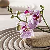 Eurographics DG-DT12091 Deco Glass - Orchids in The Sky 30 x 30 cm