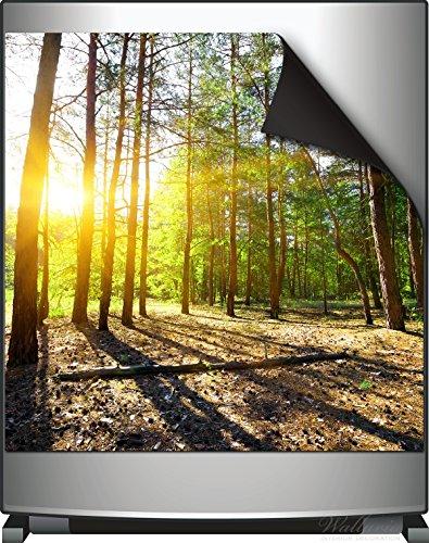 Wallario Magnet für Kühlschrank / Geschirrspüler, magnetisch haftende Folie - 60 x 60 cm, Motiv: Sonnenstrahlen tief hinter dem Wald (Kiefern-aufkleber)