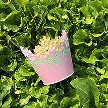 YFF Candy Color 6 color jardín macetero redondo, Rosa