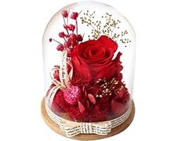 Naturelle Rose Eternelle sous Cloche, AOKKR Rose Rouge Eternelle avec Un Ruban et Une Carte de vœux, Fleurs éternelles Cadeau