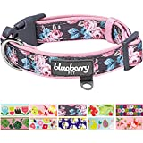 Blueberry Pet Soft & Comfy Welcoming Spring Rose Flower Prints Girly Adjustable Padded Dog Collar, Neck 37cm-50cm, Medium, Collars for Dogs, Matching