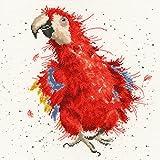 Bothy Threads Kit de point de croix-Parrot on Parade