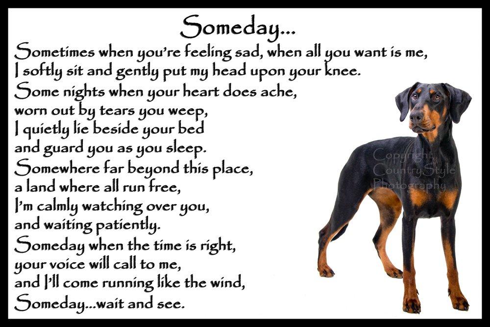 Doberman Pinscher dog bereavement pet loss sympathy memorial Flexible Fridge Magnet – Someday