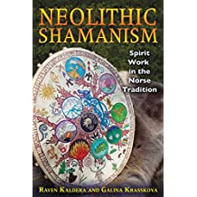 Neolithic Shamanism: Spirit Work in the Norse Tradition (English Edition)