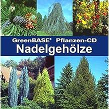 GreenBASE-Pflanzen-CD. Nadelgehölze: GreenBASE-Pflanzen-CD
