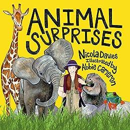Animal Surprises by [Davies, Nicola, Cameron, Abbie]