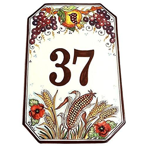 CERAMICHE D'ARTE PARRINI- Künstlerische italienische Keramik Keramik Hausnummer 30x20 individuelle Dekoration Traube und Granatapfel , Fliesen handgemacht in Italien Toscana - Trauben-keramik-fliese