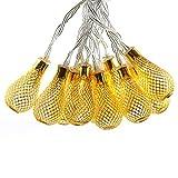 Dailyart® 2M Elegant Drops 20lights LED String Light, Warm White Glow, Battery-Powered