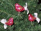 3 tlg. Glas Vogel Set in 'Ice Rot Gold' - Christbaumkugeln - Weihnachtsschmuck-Christbaumschmuck