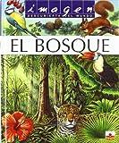 IMAGEN EL BOSQUE + PUZZLE (Imagen Descubierta Del Mundo)