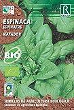 Semillas ECOLOGICAS Espinaca Matador 3 gr.