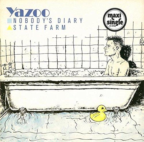 nobodys-diary-state-farm