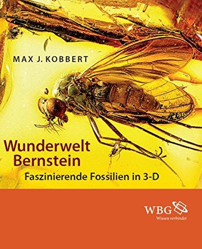 Wunderwelt Bernstein: Faszinierende Fossilien in 3-D