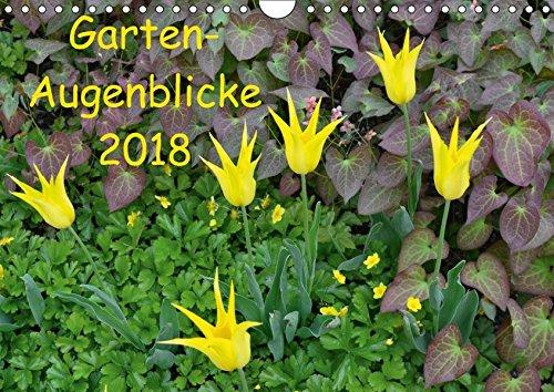 Preisvergleich Produktbild Garten-Augenblicke (Wandkalender 2018 DIN A4 quer): Stimmungsvolle Gartenszenen im Wechsel der Jahreszeiten (Monatskalender, 14 Seiten ) (CALVENDO Natur)