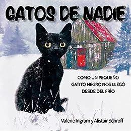 Gatos de nadie: Cómo un pequeño gatito negro nos llegó desde el ...