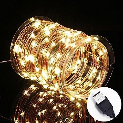intensité variable étanche Starry Guirlande lumineuse LED alimenté par USB à suspendre Docor pour chambre à coucher Intérieur Extérieur 10,1m Fil de cuivre 100LEDs Blanc Chaud éclairage d'ambiance pour patio Mariage de Noël, blanc chaud, pack of 1
