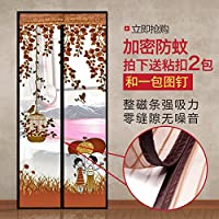 RUGAI-UE Mosquito Curtain Window Screen Curtain Household Partition Encryption Quiet Summer Kitchen Magnetic Soft Screen Door Curtain